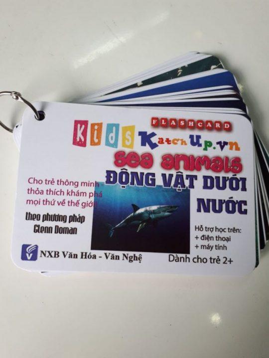 Hop-Flashcard-KatchUp-Tieng-Anh-cho-be-chu-de-dong-vat-duoi-nuoc