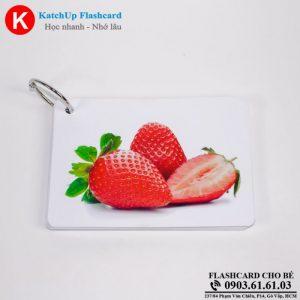 Hop-Flashcard-KatchUp-Tieng-Anh-cho-be-chu-de-phong-trong-nha