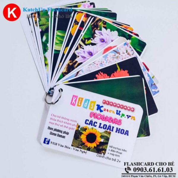 Hop-Flashcard-KatchUp-Tieng-Anh-cho-be-chu-de-cac-loai-hoa