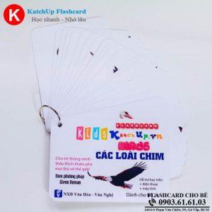 Hop-Flashcard-KatchUp-Tieng-Anh-cho-be-chu-de-cac-loai-chim